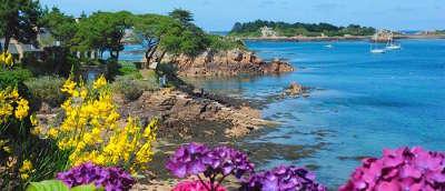 Ile de brehat ile aux fleurs routes touristiques dans les cotes d armor guide du tourisme en bretagne