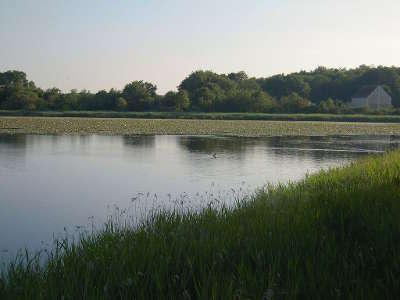 L etang de la sous dans la reserve naturelle nationale de cherine en 2014 le parc naturel regional de la brenne guide touristique de l indre crentre val de loire
