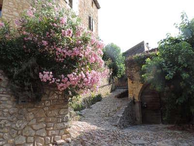 La roque sur ceze ruelles et ses calades plus beaux villages routes touristiques du gard guide touristique du languedoc roussillon