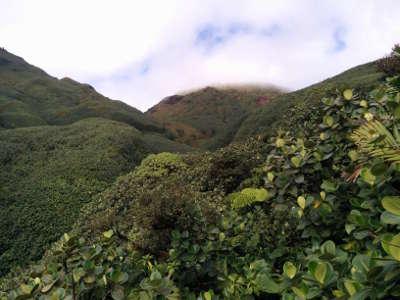 La soufriere parc national de la guadeloupe guide du tourisme de basse terre guadeloupe