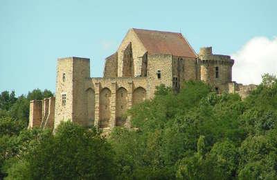 Le chateau de la madeleine parc naturel regional de la vallee de chevreuse guide touristique