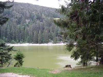 Le lac vert guide touristique haut rhin alsace