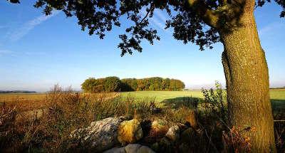 Le parc naturel regional du gatinais francais guide du tourisme de l ile de france