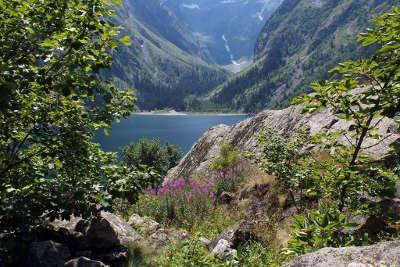 Le parc naturel regional du haut jura guide touristique