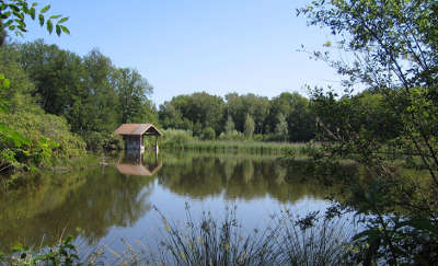 Les etangs de bonnelles classes en reserve naturelle regionale guide du tourisme de l ile de france