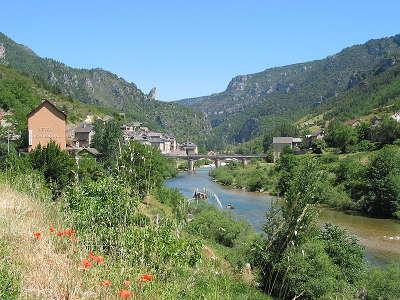 Les vignes et son pont sur le tarn routes touristique de la lozere guide du tourisme du languedoc roussillon