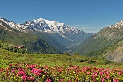 Mont blanc avec les aiguilles de chamonix et la mer de glace routes touristiques de haute savoie guide du tourisme de rhone alpes