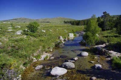 Mont lozere les cevennes guide du tourisme de lozere