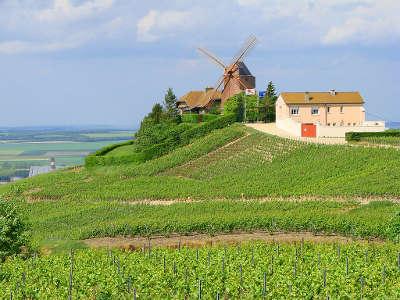 Moulin de verzenay sur le versant septentrional de la montagne de reims la route touristique du champagne la montagne de reims