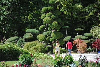 Parc floral de la source jardin remarquable basin les routes touristiques dans le loiret guide du tourisme centre v