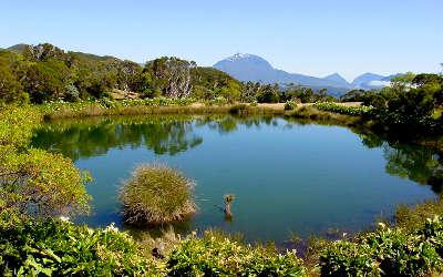 Parc national de la reunion le piton de l eau guide du tourisme a la reunion