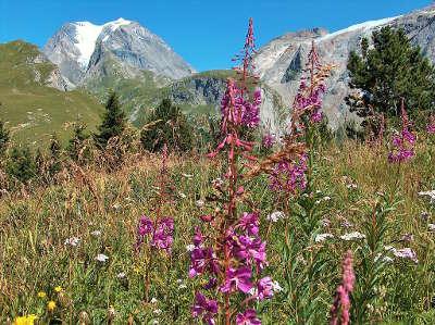 Parc national de la vanoise grande casse vue du mont bochor routes touristiques de savoie guide touristique de rhone alpes