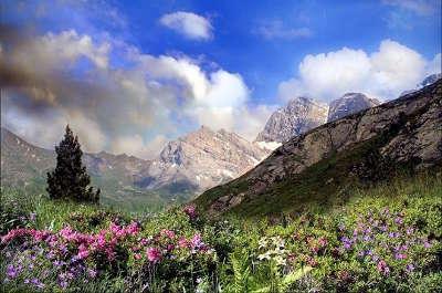 Parc national des pyrenees guide touristique