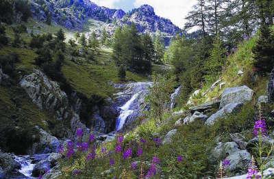 Parc national du mercantour guide touristique de la provence alpes cote d azur