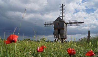 Parc naturel de la foret d orient le moulin de dosches guide du tourisme de l aube champagne ardenne