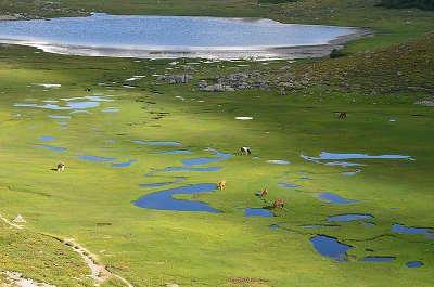 Parc naturel regional corse guide du tourisme de la corse