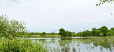 Parc naturel regional de la brenne guide touristique de l indre centre val de loire