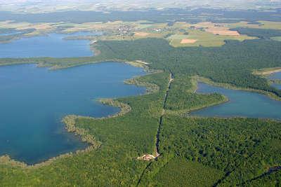 Parc naturel regional de la foret d orient aube guide touristique de la champagne ardenne