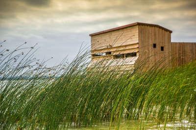 Parc naturel regional de lorraine observatoire d oiseaux guide du tourisme en lorraine