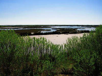 Parc naturel regional des landes de gascogne domaine de certes routes touristiques du teritoire de belfort guide du tourisme de franche comte