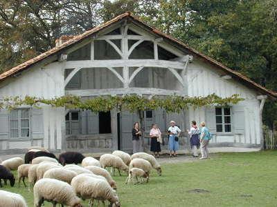 Parc naturel regional des landes de gascogne maison traditionnel routes touristiques du teritoire de belfort guide du tourisme de franche comte