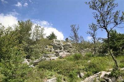 Parc naturel regional des vosges du nord paysage routes touristiques guide du tourisme