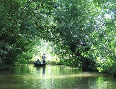 Parc naturel regional du marais poitevin la venise verte guide du tourisme du pays de la loire