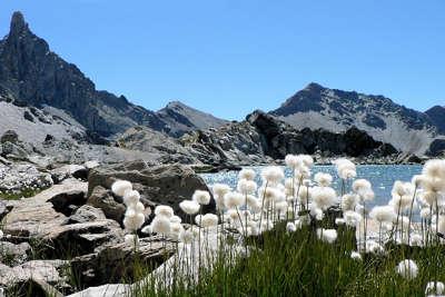Parc naturel regional du queyras les routes touristiques des hautes alpes guide du tourisme de provence alpes cote d azyr