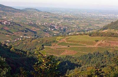 Pays beaujolais routes touristiques du rhone guide du tourisme rhone alpes