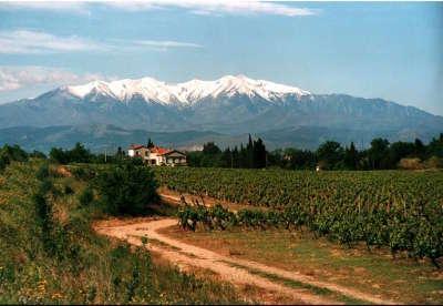 Pic du canigou vue depuis perpignan routes touristiques des pyrenees orientale guide du tourisme occidanie