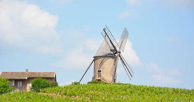 Romaneche thorins route des vins du beaujolais rhone