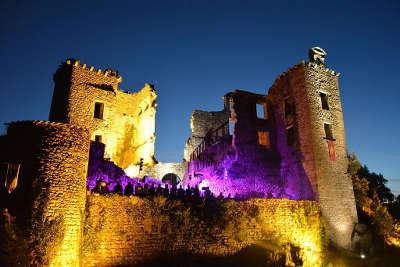 Saint martin laguepie le chateau routes touristiques du tarn guide du tourisme de l occitanie