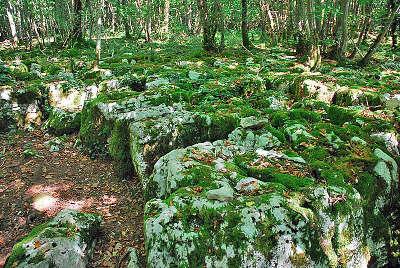 Site du mausollee pres de faverolles routes touristiques dans la haute marne guide du tourisme grand est