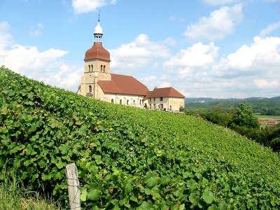 Vignoble jurassien route des vins du jura guide du tourisme du jura